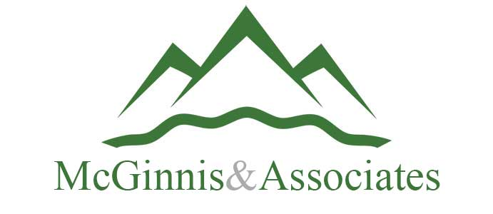 McGinnis and Associates LLC